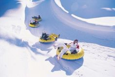 From skiing to snowmobiling to dog-sledding, enjoy all types of winter activities in New York. See our list of New York winter activities before planning your next excursion to the state. Tandem, Winter Park Colorado, New York Winter, Winter Fun, Winter Magic, Winter Travel, Winter Snow, Winter Time, Winter Season