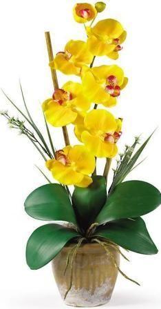 Single Stem Phalaenopsis Silk Orchid