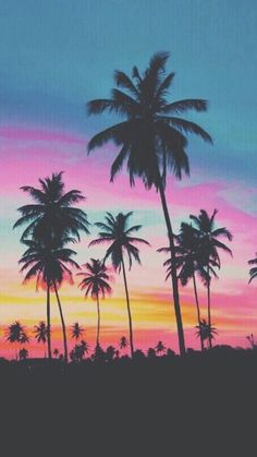 Palm trees iPhone 6/6s wallpaper