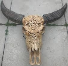 animal skull art - Google Search