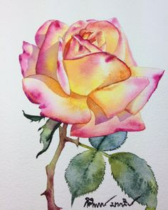Yellow rose watercolor, original painting, botanical artwork, floral watercolor,… – Garden Likes Easy Watercolor, Watercolor Cards, Watercolor Flowers, Watercolor Paintings, Watercolors, Drawing Flowers, Watercolor Pencils, Watercolor Portraits, Watercolor Landscape