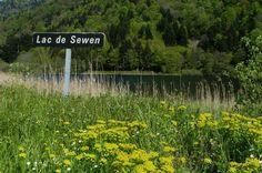Lac de Sewen - #Alsace