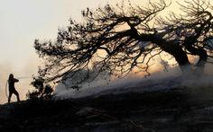 Το Μακεδονικο: Κίνδυνος ανακοπής από τη φωτιά στο δάσος