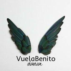 Logo - Vuela Benito