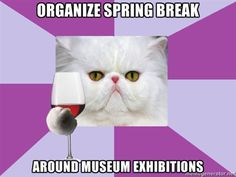 Art History Major Cat