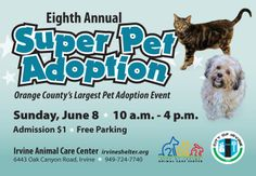 "Lots of catching up to do. We are busy redesigning our website (yes, you can still order online), looking at new pet events, buying more products for our online store and possibly setting up a Volusion Facebook store with special promotions. **Save the date for June 8th Super Pet Adoption. This is a fantastic event. Little Paws will have a booth there with lots of new dog, cat and rabbit products for sale. Gidget will be there so make sure to come by and say ""Hello""."