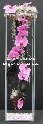 Imágenes de DECORACION FLORAL CASA VERDE en Ecatepec de Morelos