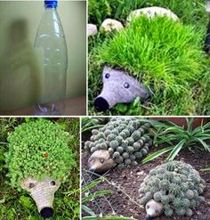 MENTŐÖTLET - kreáció, újrahasznosítás: PET-palackból: NÖVÉNYSÜN