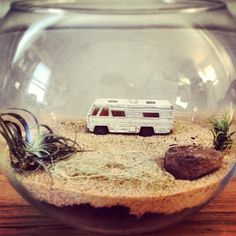 Breaking Bad Terrarium. http://www.jeffreymarkell.com @Megan Ward Maxwell Foley