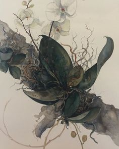 """Elizabeth Gordon Gallery on Instagram: """"Beautiful orchid Philaenopsis water colour from Lindy Acton . Framed to finished size of 75 x 95 cms."""" Orchids, Watercolor, Colour, Gallery, Painting, Beautiful, Instagram, Art, Pen And Wash"""