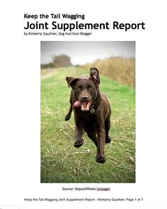 Keep the Tail Wagging Joint Supplement Report