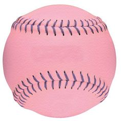 Arlington Girls Softball Association - Arlington, VA | Dream big ...