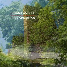 Brian Lavelle