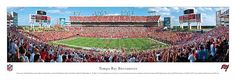 Tampa Bay Buccaneers - Raymond James Stadium - NFL Panorama $29.95