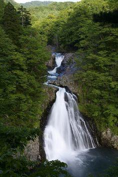 春は雪解けで水量が増し、迫力ある瀑布に!法体の滝。
