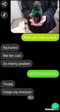 Wtf Funny, Funny Memes, Polish Memes, Best Memes Ever, Dad Jokes, Aesthetic Art, Hypebeast, Haha, Funny Pictures