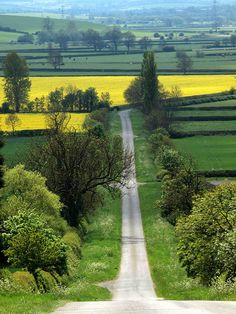 A country road in Leicestershire, England