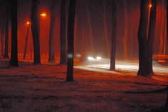 Stay safe driving at night with these tips for night driving.