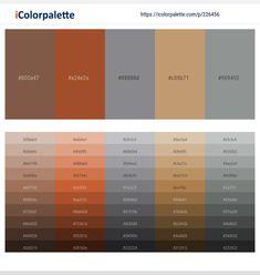 Ironstone – Cod Gray – Ebb – Cape Palliser – Just Right Color scheme Orange Color Palettes, Red Colour Palette, Brown Pantone, Pantone Color, Brown Color Schemes, Hex Color Codes, Hex Codes, Color Dorado, B & B