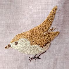 Little Dorothy the wren - known as Dotty to her friends.