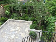 Brooklyn back garden -just planted  Lindsey Taylor gardens