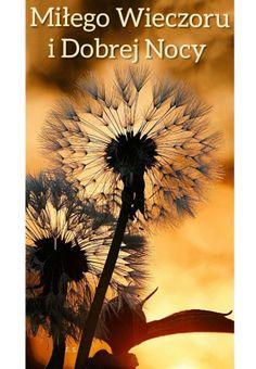 Dandelion, Flowers, Plants, Poster, Art, Inspirational Quotes, Disney, Hearts, Art Background