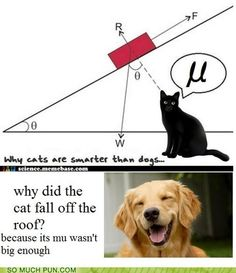 Inclined plane = hilarity