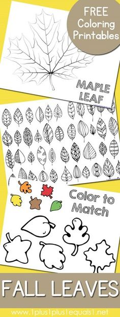 Fall Leaves and Trees Coloring Printables - Free Fall Leaves and Trees Coloring Pages Want fantastic helpful hints about arts and crafts? Head to our great site! Autumn Crafts, Autumn Art, Autumn Theme, Fall Leaves Crafts, Fall Preschool, Preschool Crafts, Crafts For Kids, Tree Coloring Page, Colouring Pages