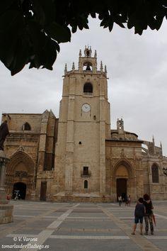 CATEDRAL DE SAN ANTOLÍN, Palencia, CyL, España