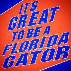 Univ Of Florida, Florida Girl, Florida Gators Football, Gator Football, Florida Gators Wallpaper, Collage Football, Volleyball Team, I School, College Sport