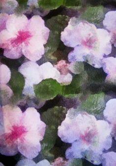 Filtered florals: print downloads