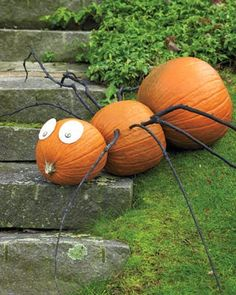 Dishfunctional Designs: Decorating With Unusual & Unique Pumpkins for Autumn and Halloween