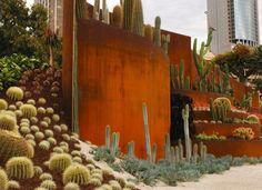 Cactus retaing wall - Found on hgtv.com