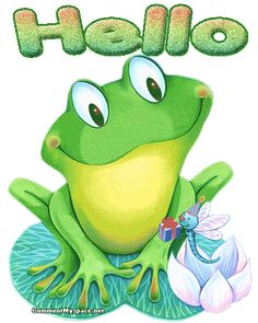 frog gifs - Google Search