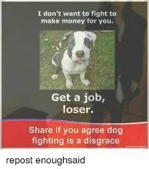 Image result for dont fight pitbulls meme #dogsfunnypitbulls