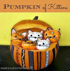 Pumpkin full of kittens! sewlicioushomedecor.com