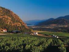See Ya Later Ranch by Okanagan Falls, Must make a visit here! See Ya, Ranch, Vineyard, Spaces, Outdoor, Guest Ranch, Outdoors, Vine Yard, Vineyard Vines