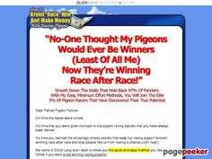 (adsbygoogle = window.adsbygoogle || []).push();     (adsbygoogle = window.adsbygoogle || []).push();  How To Race Pigeons – True Racing Secrets Revealed!    http://www.HowToRacePigeons.com/ review     (adsbygoogle = window.adsbygoogle || []).push();  Amazing Complete Guide...