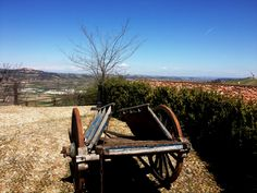 Barbaresco tour