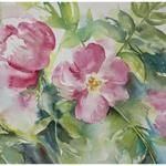 Video Demonstration: Wild Roses in Watercolor Watercolor Art Face, Watercolor Art Lessons, Watercolor Art Paintings, Watercolor Flowers, Artist Painting, Watercolor Pencils Techniques, Inspiration Art, Art Nouveau, Painting Gallery