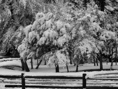 Rain and snow: Storm rolls through Arizona