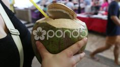 Fresh Coconut drunk with a Straw - Stock Footage | by JahnProductions