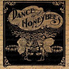 byrdsandbees:Dance, dance, dance