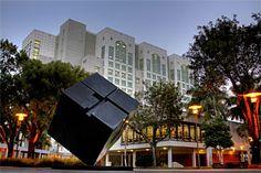 Florida International University.
