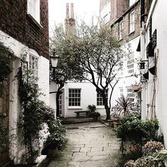 Can you imagine if we got snow ., I mean proper snow how beautiful #prettycitylondon would look - for now I will make do with @miss.squarehare delicious winter edits