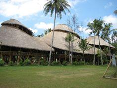 La Escuela Verde de Bali es un colegio e instituto privado ubicado junto al río Ayung, cerca de Ubud, Bali (Indonesia). Se ha hablado mucho de la importancia del diseño ecológicamente sostenible de la escuela y su especial enfoque en una educación sostenible para jóvenes estudiantes.    John y Cynthia Hardy fundaron la escuela en septiembre de 2008 con 98 estudiantes, y la misión de proporcionar a los jóvnes una disciplina holística de la educación con la sostenibilidad como su núcleo.