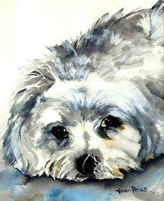 Maltese watercolor
