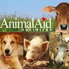 23 Animal Advocacy Ideas Animal Advocacy Animals Service Dog Project