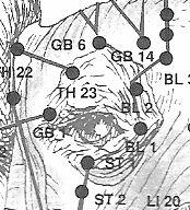 acu+hond+oog.png (174×192)
