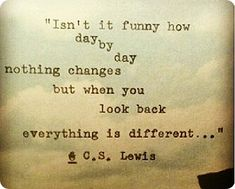 """Day by day nothing changes but when you look back everything is different.."""